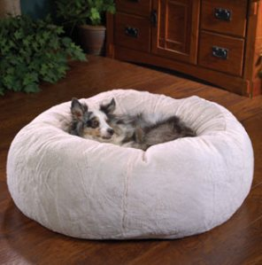 A dog's favorite bed